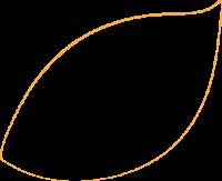 feuille orange_gauche_ligne