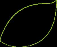 feuille verte_gauche_ligne